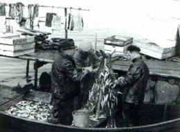 Strömmingsfiske